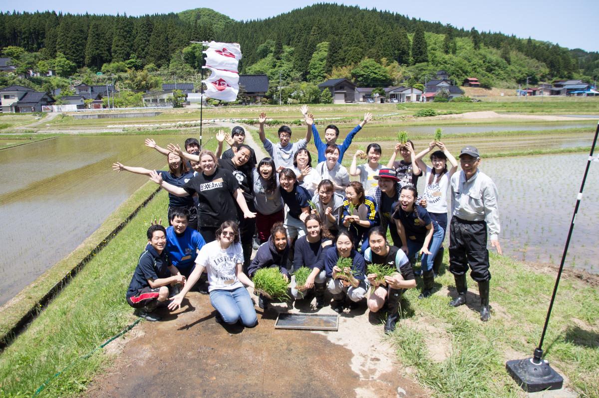 Akita international university rice planting linnaeus university Matilda Sjoeberg