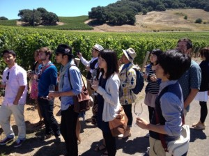 Visit to Kenzo Winery in Napa Valley