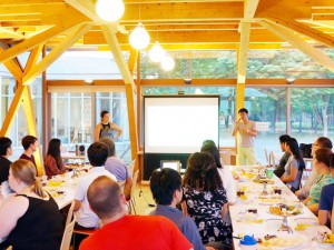 Presentation of GSP392