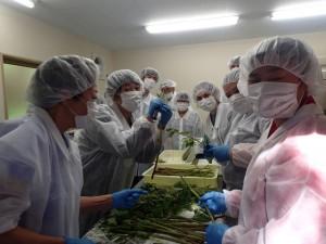 山菜の加工体験 (以上、赤田集落)