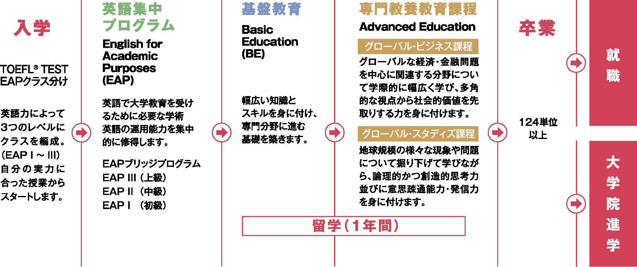 カリキュラムの流れ図