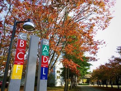 キャンパス案内と紅葉