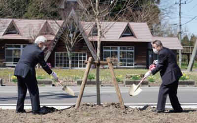 植樹式で新しく植えた桜の若木に土をかけるふたり